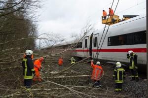 Jumlah Korban Tewas Badai Friederike di Jerman Bertambah