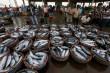 Ekspor Ikan Nasional 2017 tak Capai Target