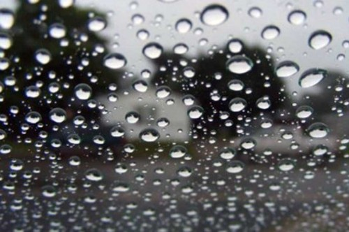 Segera cuci mobil yang terkena air hujan agar jamur kaca tidak
