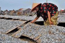 Tujuh Pabrik Surimi Diminta Diversifikasi Bahan Baku