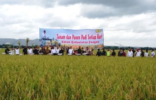Menteri Pertanian Andi Amran Sulaiman menghadiri panen raya 2018