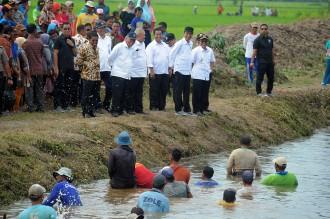 Tawa Jokowi saat Tinjau Desa Padat Karya Tunai di Banyuasin