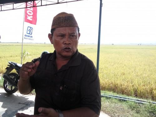 Ketua Gabungan Kelompok Tani (Gapoktan) Sidorukun Supriadi.