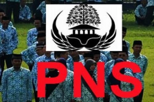 Logo PNS, Ant