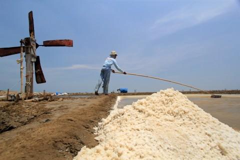 Kemenperin Beri Kemudahan Izin Impor Garam untuk Industri