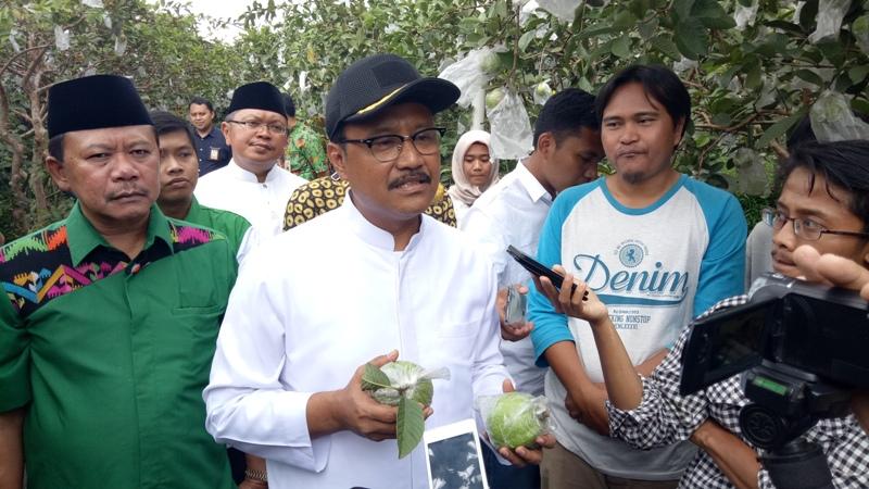 Calon Gubernur Jawa Timur Saifullah Yusuf saat berkunjung ke Kebun Jambu Kristal di Kecamatan Bumiaji, Kota Batu, Rabu 21 Februari 2018.