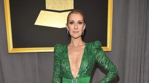 Celine Dion Kenang Penderitaan Suami Sebelum Meninggal