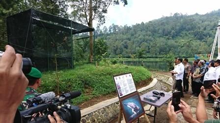 Presiden Joko Widodo melpas Elang Jawa/Medcom.id/Yogi Bayu Aji