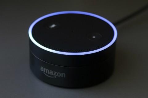 Amazon Pasang Perpustakaan Audio Gratis untuk Alexa