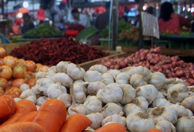 Ilustrasi bawang putih. (FOTO: MI/Aries)