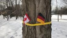 Salah Pasang, Kanada Sambut Raja Belgia dengan Bendera Jerman