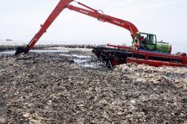 Pembersihan Lautan Sampah di Muara Angke