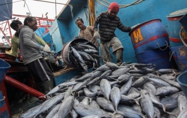 Ketua DPR Ingin Nelayan Sejahtera dari Hasil Laut