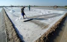 Indonesia Targetkan Swasembada Garam di 2021