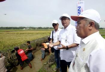 Uji Coba Padat Karya Tunai BNI di Tiga Provinsi