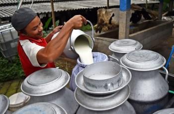 Kementan Bertekad Wujudkan Kemandirian Susu Nasional 2025