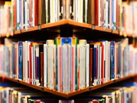 Perpustakaan Dituntut Bertransformasi ke Arah Digital