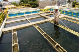 Pasokan Air di Taman Kota Jakbar Terhenti