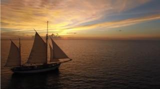 Fleur de Passion, Kapal Penyapu Ranjau era Perang Dunia