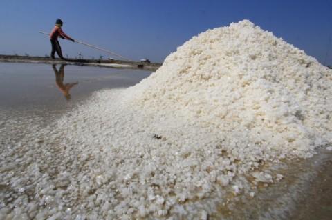 Garam Terasa 'Manis' di Karawang