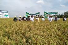 Petani Diharapkan Bisa Punya Industri Pangan Mandiri