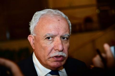 Arab States will Block Israel Security Council Bid