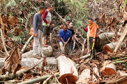 Satreskrim Aceh Singkil OTT Pelaku Illegal Logging