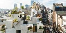'Rumah Pohon' di Kampung  Jepang