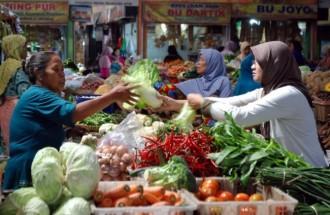 Harga Berbagai Sayuran di Ambon Normal