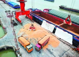 Setahun, Produksi Kedelai Tiongkok Diprediksi Tumbuh 12,8%