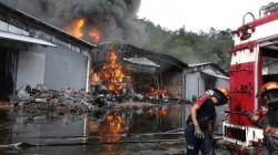 Api Masih Melumat Gudang Karet PT Incasi