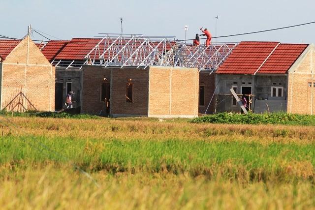 Pembangunan proyek rumah murah di Indramayu yang memakan lahan persawahan. Alih fungsi lahan merupakan dilema utama di daerah yang juga harus menjalankan program ketahanan pangan. Antara Foto/Dedhez Anggara