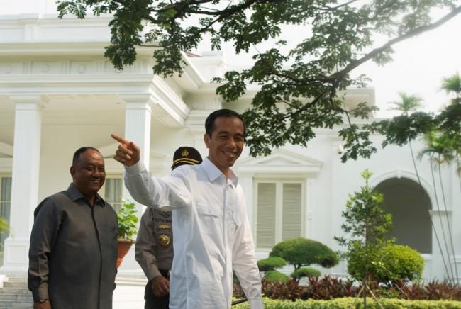 Presiden Joko Widodo di Kompleks Istana Kepresidenan Jakarta (Foto: Antara)
