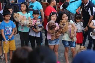 Kumpul di Mall, CDL juga Kampanye 'Dog are not Food'