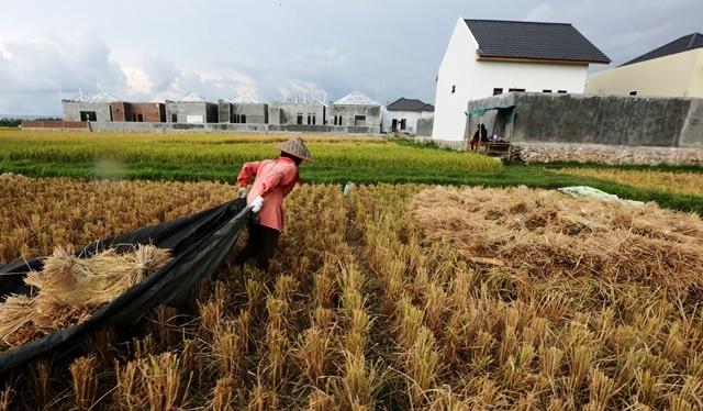 Sebuah perumahan di Aceh berdiri di atas lahan yang sebelumnya adalah sawah produktif. Alih fungsi lahan merupakan masalah tersendiri dalam realisasi program 1 Juta Rumah. file/Antara Foto
