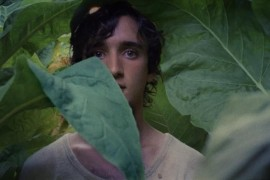 Netflix Beli Hak Tayang Dua Film Pemenang Cannes Festival