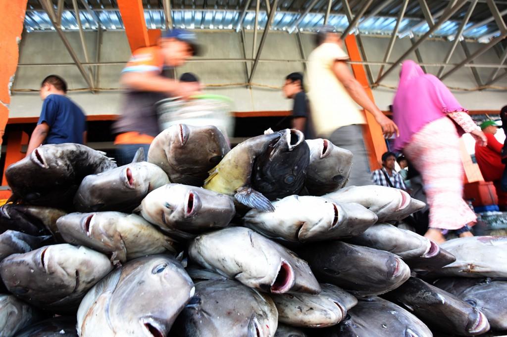 Permintaan Ikan di Makassar Naik Hingga 100% saat Ramadan