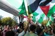Hamas Serukan Pembentukan Dewan Nasional Baru