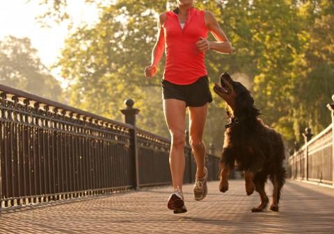 Tips Joging Bersama Hewan Peliharaan