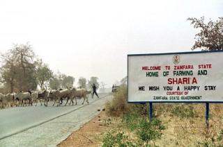 Kelompok Pencuri Ternak Bunuh 23 Orang di Nigeria