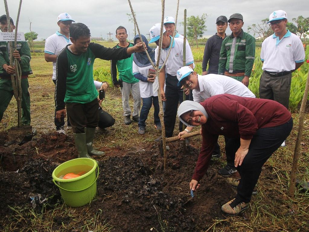 PLN tanam 32 ribu pohon di seluruh Indonesia. (Foto: Antara).
