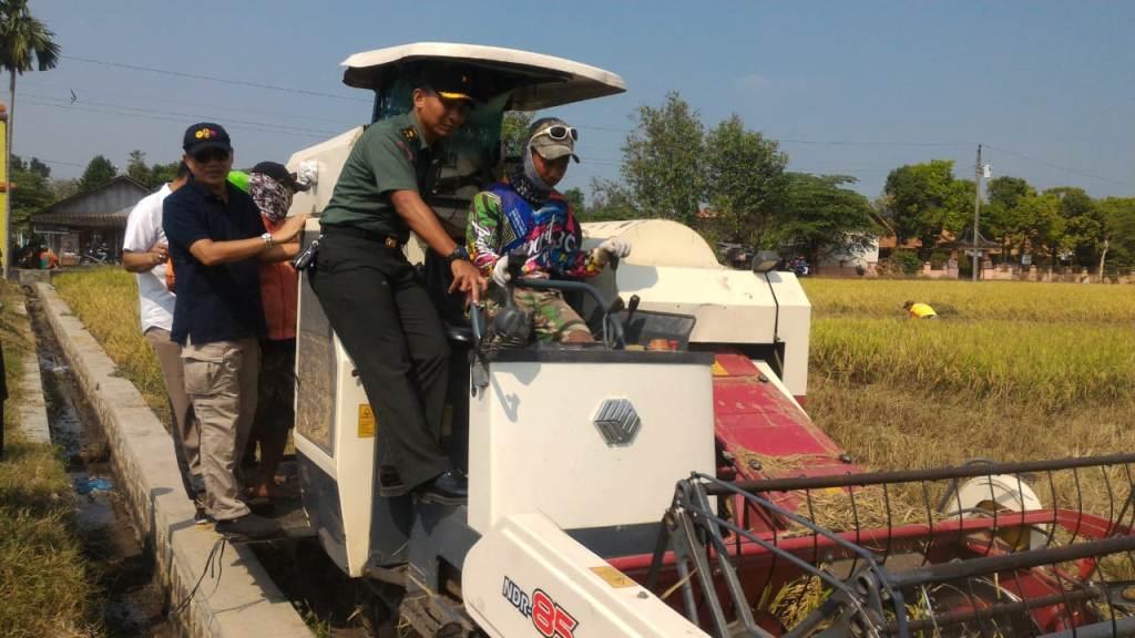 Kementan tetap serap gabah petani (Foto: dokumentasi Kementerian Pertanian)