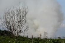Kebakaran hutan di Aceh meluas
