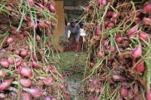 Setelah Idulfitri, Harga Bawang Merah di Bintaro Naik