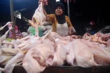 Pemkot Berupaya Turunkan Harga Daging Ayam