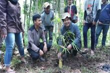 Mahasiswa Tanam Bambu Jaga Sumber Mata Air di Malang