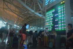 Bali Siapkan 50 Bus Gratis untuk Evakuasi Penumpang Bandara