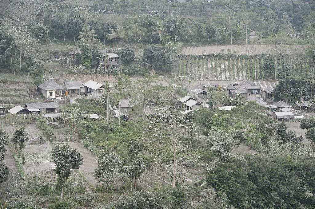 Pemukiman dan perkebunan yang terpapar abu vulkanis Gunung Agung di Desa Pemuteran, Karangasem, Jumat, 29 Juni 2018, Ant - Nyoman Budhiana