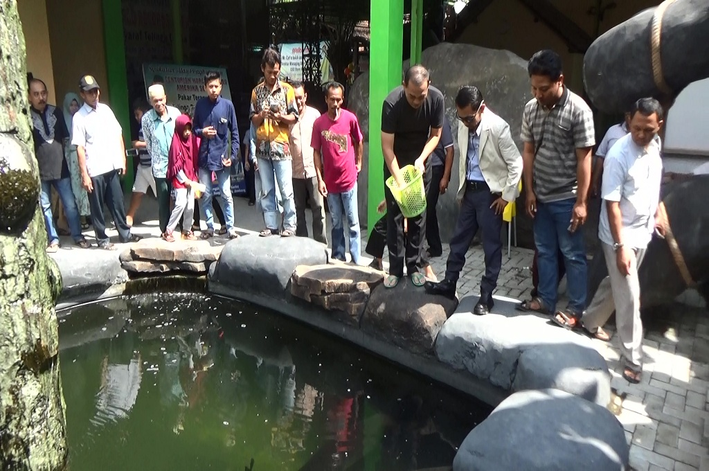 Masudin, warga Jombang, memberikan makan pada lima ikan arapaima, ikan jenis air tawar terbesar di dunia, Sabtu, 30 Juni 2018, Medcom.id - Nurul Hidayat