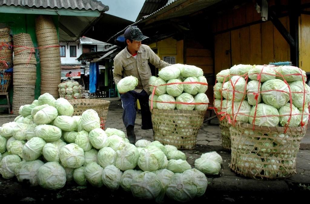Distribusi sayuran di Semarang, Jateng. (ANT/ADITYA PRADANA PUTRA)